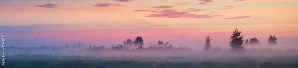 Fototapeta Country field in a fog at sunrise. Tree silhouettes in the background. Pure golden morning sunlight. Epic pink clouds. Idyllic rural scene. Concept art, fairytale, picturesque scenery. Panoramic image