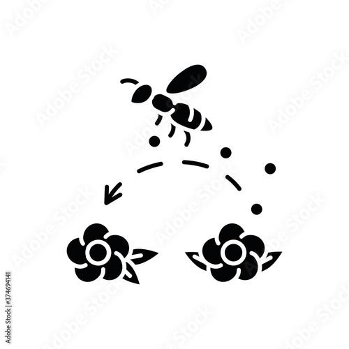 Canvas Print Pollination black glyph icon
