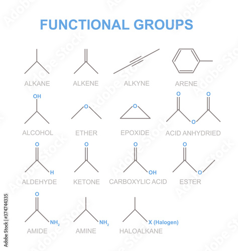 Functional groups are specific groupings of atoms within molecules have characteristic properties Canvas Print