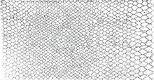 Snakeskin Pattern Imitation. L...