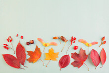 Autumn Border Composition With...