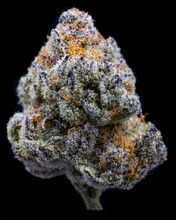 Marijuana Cannabis On Black Background
