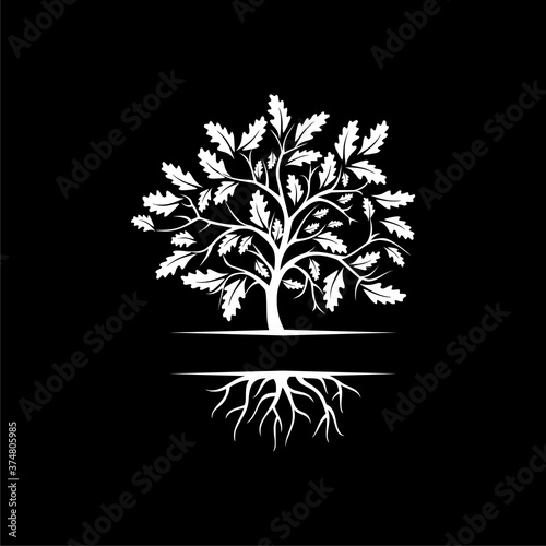Fototapeta Tree with roots icon isolated on dark background