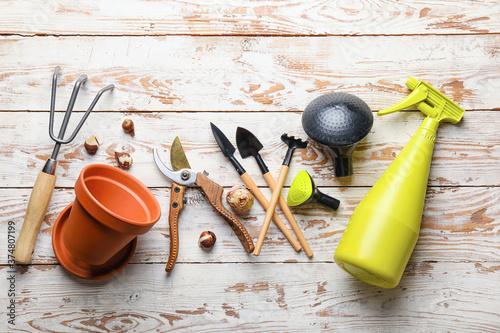 Gardening tools on wooden background Wallpaper Mural