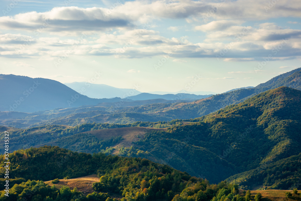 Fototapeta mountainous countryside in the afternoon. beautiful landscape of carpathians. valley of borzhava ridge in the distance. clouds on the sky. sunny weather