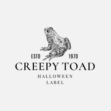 Premium Quality Halloween Logo Or Label Template. Hand Drawn Creepy Toad Or Frog Sketch Symbol And Retro Typography.