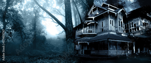 Obraz Haunted house. Old abandoned house in the night forest - fototapety do salonu