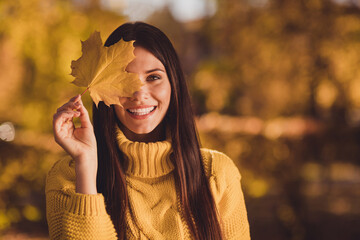 Close up photo of positive cheerful girl enjoy autumn travel fall woodland trip close cover eyes maple leaf wear jumper sweater
