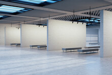 Minimalistic Gallery Hall With...