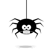 Halloween Spider In Face Mask ...