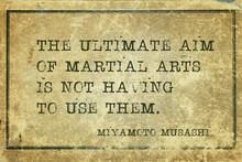 Ultimate Aim Musashi