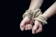 Hands Of A Victim Woman Tied U...
