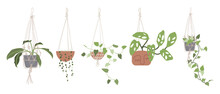 Set With Hanging Air House Plants In Flower Pots. Urban Jungle, Home Gardening. Hand Drawn Vector Illustration In Flat Cartoon Style. Perfect For Poster, Sticker, Print, Card