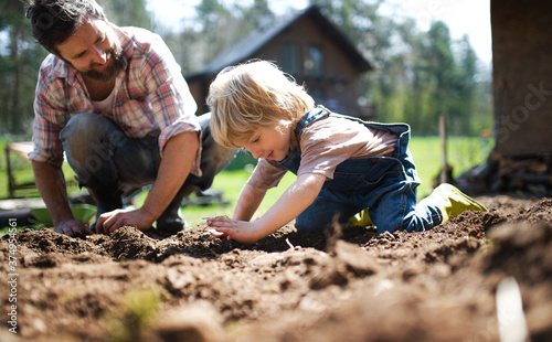 Canvastavla Father with small son working outdoors in garden, sustainable lifestyle concept