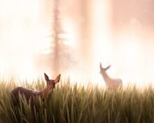 Two Toy Deer Look Back Into Pi...