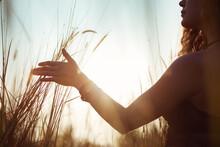 Female Hand Stroking High Grass