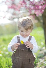 Boy Outdoor Flower