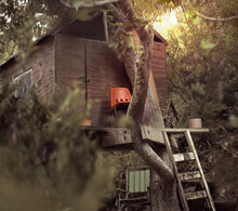 Wooden Tree House With Plastic Orange Chair And Rickety Ladder