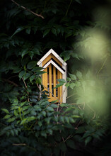 Yellow Wooden Butterflies House Amongst Leaves And Branches In Garden
