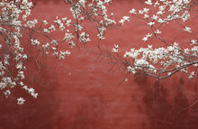 Magnolia And Red Wall