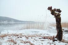 Frozen Lake Wallersee Landscape In Austria In Winter