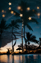 Tropical Destination By Night With Custom Made Star Shape Bokeh