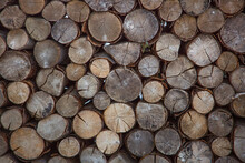 A Pile Of Tree Logs Background