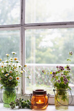 Herbs And Flowers With Lantern On Window Sill