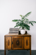 Vintage Vinyl Records And Plant On Antique Cabinet