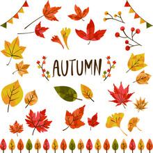 秋の紅葉イラスト集