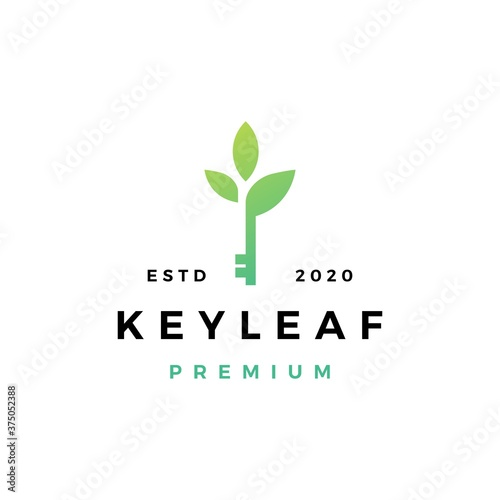 Fototapeta key leaf logo vector icon illustration