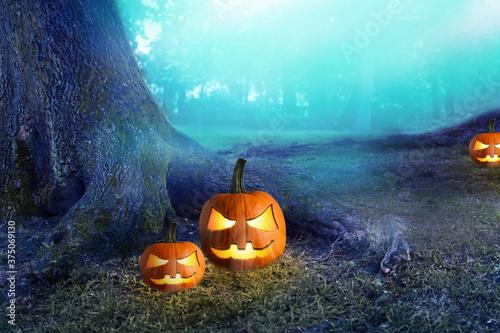 Photo Halloween pumpkin in dark mystery forest. Halloween Background.