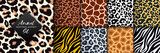 Trendy wild animal seamless pattern collection. Vector leopard, cheetah, tiger, giraffe, zebra skin texture set for fashion print design, fabric, textile, wrapping paper, background, wallpaper