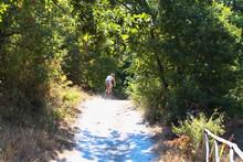 Cyclist Rides Uphill Along A C...