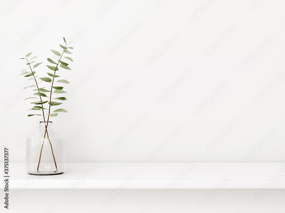 Fototapeta Interior wall mockup with green eucalyptus branch in bottle standing on the shelf on empty white background with free space. 3D rendering, illustration.