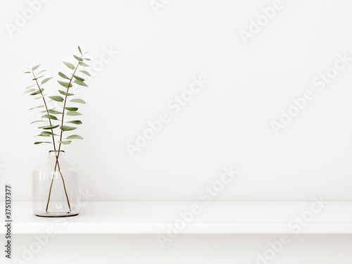 Canvastavla Interior wall mockup with green eucalyptus branch in bottle standing on the shelf on empty white background with free space
