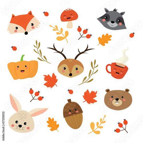 elementi carini dell' autunno