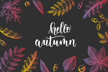 Autumn Lettering Calligraphy Phrase - Hello Autumn. Invitation Card With Hand Made Motivation Quote With Hand Drawn Leaves In Sketch Style.  Vector Design