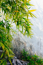 Chinese Gardening