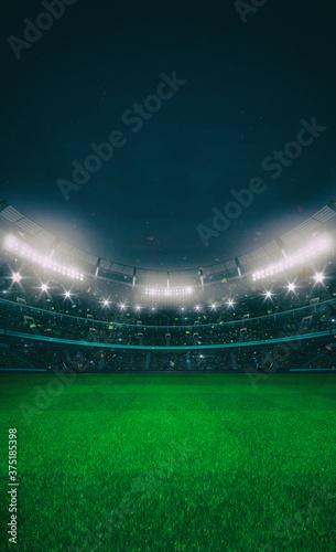 Grand stadium full of spectators expecting an evening match on the grass field Fotobehang
