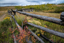 Scenic Fall Landscape With Log...
