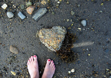 Woman's Feet Stand Next To A Heart Shaped Rock Covered In Barnacles And Seaweed