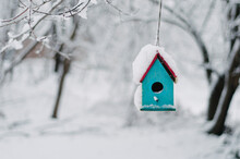 Blue Hanging Birdhouse In Snow