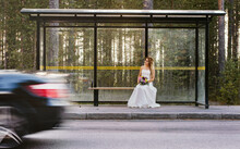 A Lonely Bride Waiting On A Bu...