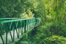 A Metal Green Bridge In The Wo...