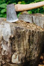 Sharp Axe Head In A Stump