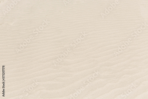 The ripples in the sand - 375207178