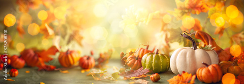 Obraz Festive autumn decor from pumpkins, berries and leaves. Concept of Thanksgiving day or Halloween with copy space - fototapety do salonu