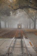 Vintage Tram In A Foggy Autumn...