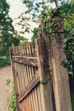 Old Gate In A Garden